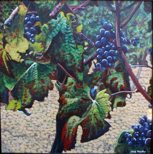 Plavic Mali Grapes1 by Jack Gunter
