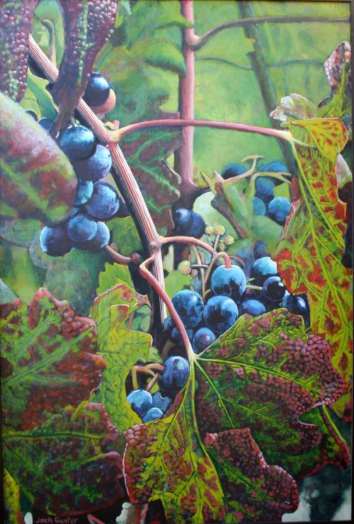 Plavic Mali Grapes vertical by Jack Gunter