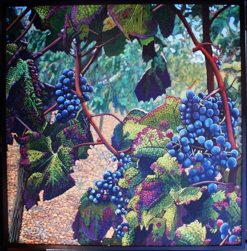 Plavic Mali Grapes magnum by Jack Gunter