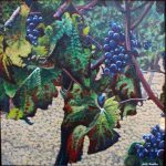 Plavic Mali Grapes1
